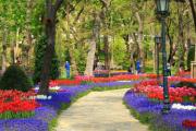 İstanbul'da Bir Nefes:Parklar